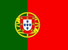 Knipsel vlag portugal